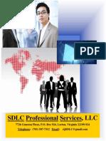 SDLC IT Staffing Services.a1.1213.2016.8pm