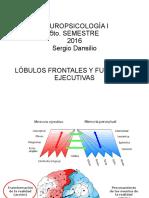 Lóbulos Frontales y Funciones Ejecutivas 2016