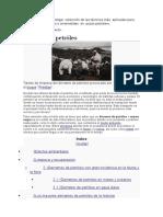 investigacion del proyecto del tsg.docx