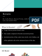 keratin protein  1