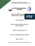 Control de brotes IPN.pdf