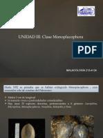 Unidad III. Monoplacophoros