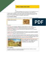 Flora y Fauna Zona Norte