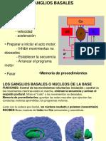 Ganglios Basales-cerebelo 2013