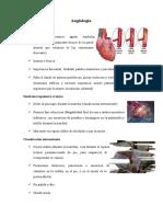 Arterias Semiologia Medica