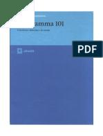 P101 Manuale Programmazione