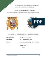 Lopez Ricardo_Informe de Practicas PP