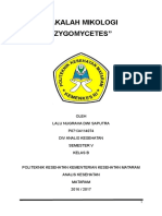MAKALAH ZYGOMYCETES