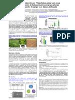 Efecto de la infección con PYVV (Potato yellow vein virus) en la producción de Solanum tuberosum grupo phureja en una muestra de campo en la Sabana de Bogotá