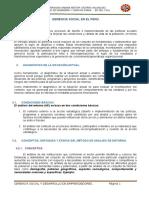 Resumen de Exposición Grupo N_1 Curso_ Gerenecia Social (1)