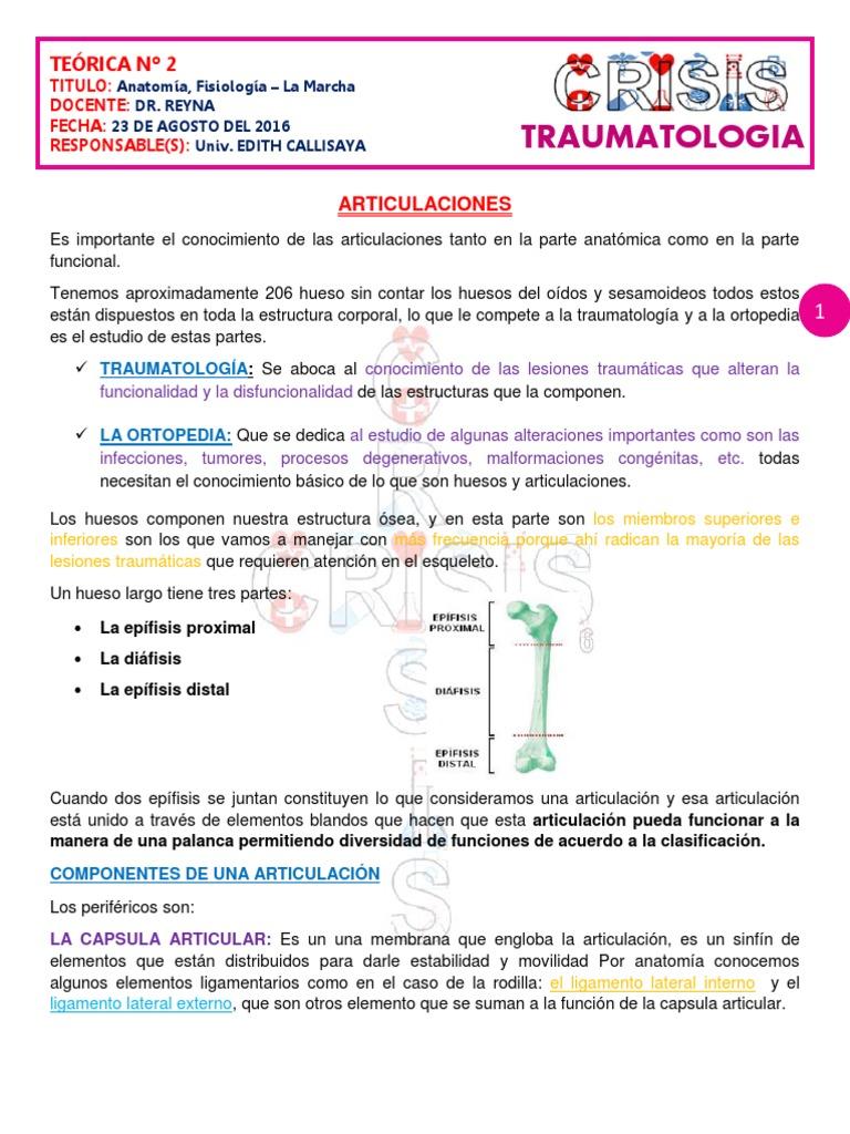 2. Anatomia, Fisiología - LA MARCHA