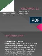 Fikih Aditian and Khairul Akbar