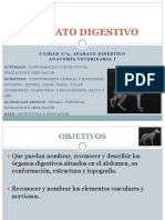 APARATO_DIGESTIVO