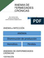 Calvo.anemia