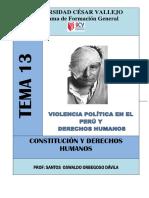 Derecho de Violencia Politica