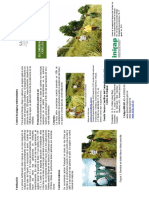 Recomednaciones_cultivar piña criolla_INIFAP.pdf