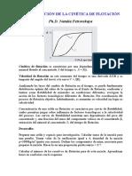 INVESTIGACIÓN DE LA CINÉTICA DE FLOTACIÓN