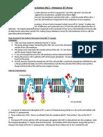 Sodium Potassium Pump and Action Potential