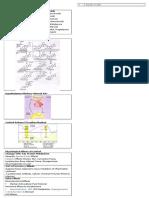 59437720-Corticosteroid (1).docx