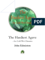 The Hardiest Agave