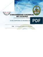 Contaminacion Ambiental en Shirambari