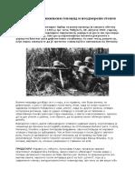 Nekaznjeni genocid i neodmereni stepen krivice - Oliver Antic.docx