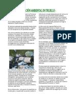 17433324-La-Contaminacion-Ambiental-en-Trujillo.doc