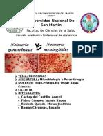 NEISSERIAS Informe.micro