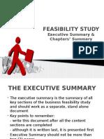 Feasibility Study - Executive Summary & Chapters Summary