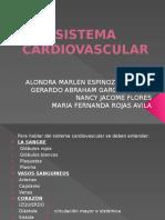 Sist. Cardiovascular