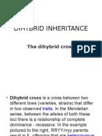 Dihybrid Inheritance