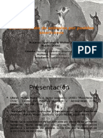 Domesticación de Animales Por Pueblos