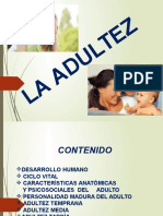 DIAPOSITIVA ADULTEZ