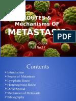 Routes & Mechanisms of Metastasis