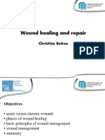 3_Bekos-Wound Healing and Repair