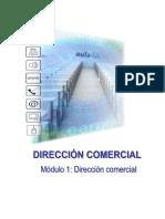 248492475-Direccion-Comercial.pdf