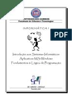 Informatica I - Manual 2011 - Finalissimo