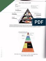 Piramides_alimentos