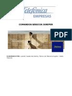 134558431-Comandos-Juniper-Networks-Atualizado-pdf.pdf