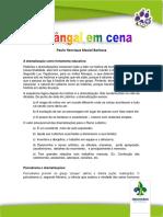 A-Jangal-em-cena-Paulo-Henrique-MG.pdf