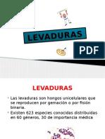 levaduras-110427162626-phpapp01