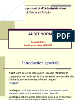 Cours Audit Emaa 2016