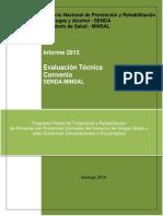 Informe Técnico 2015 Adultos General