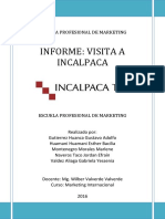 Informe Visita Incalpaca