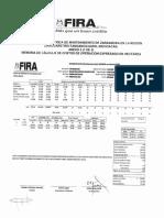 MICHOACAN Zarzamora GMF P.pdf