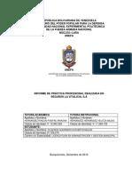 Informe Practicas Profesionales Katheryn Oliveros 21725273