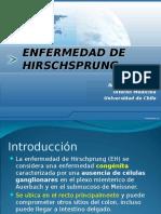 hirschsprung-090601000256-phpapp01