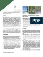 GEOLOGI LINGKUNGAN RAJA AMPAT.pdf