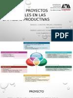 Diseño de Proyectos Sostenibles en Las Empresas Productivas