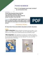 mini lab report food science
